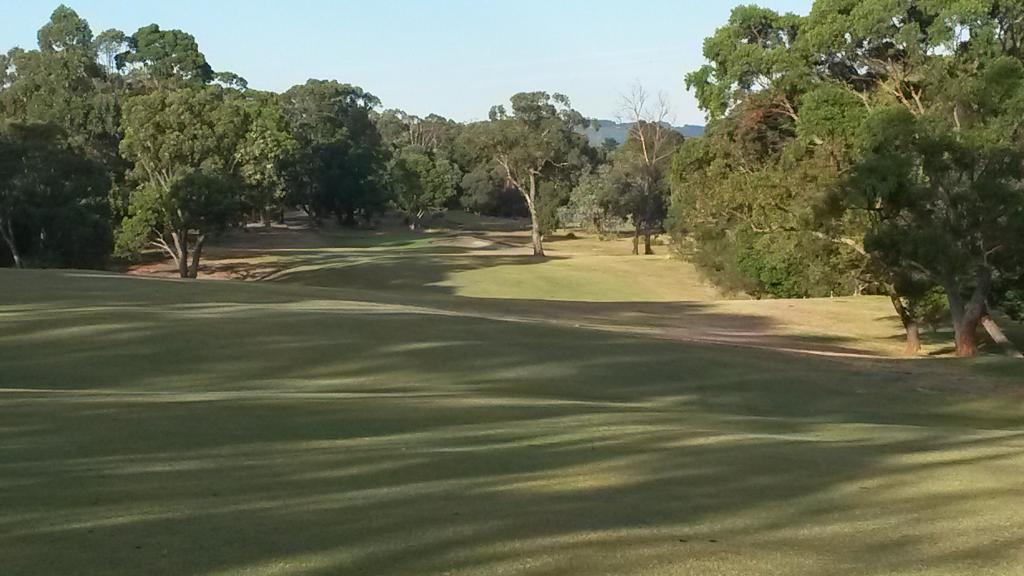 ygc first hole